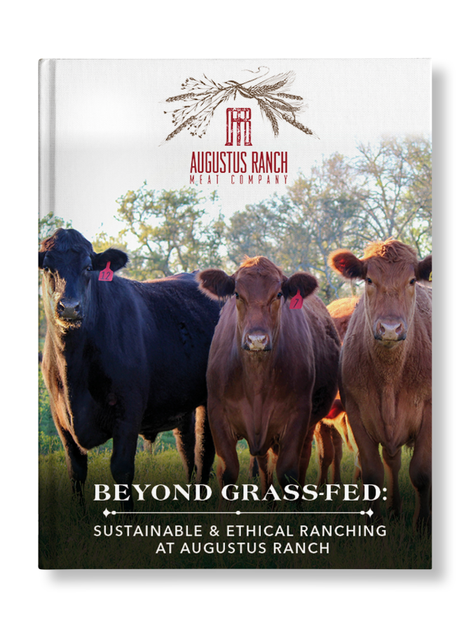 SHADOW_Beyond Grass Fed Sustainable